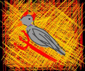 Demon Pigeon