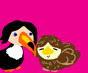 Toucan woman pats other bird woman