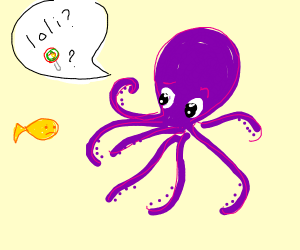 Octopus asks what a loli is