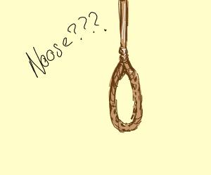 NOOSE??