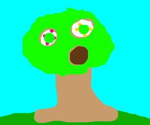 Donut trees