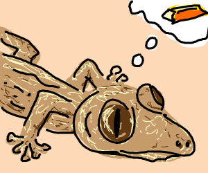 lizard baby wants gold