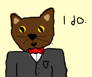 Cat in a tux getting married.