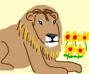 Flower lion