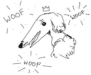 Duggo goes WooF