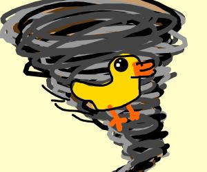 Duck in a tornado
