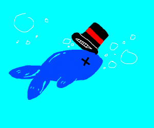Dead blue fish with hat