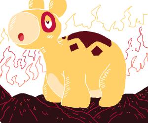 pokemon camel anime uhhh...... sry