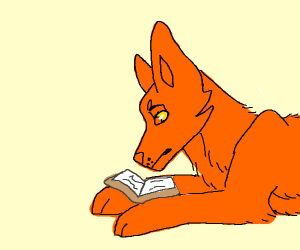 Orange wolf reading