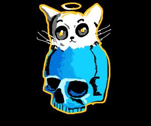 Angelic Sans Cat