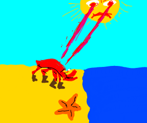 Sun used laser vision on crab wearing boots