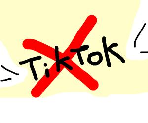 NO TIKTOK (aka heaven)