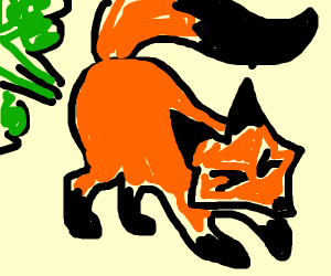 a fox that farted