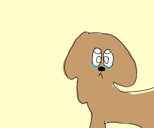 Crying dog