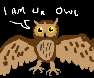 Owl is yours