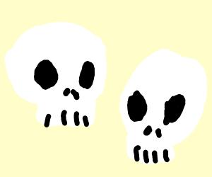 A pair of skulls
