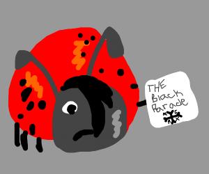 Emo ladybug