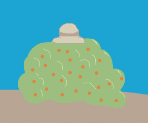 bush with a hat