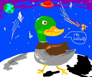 duck on moon is cold and says so