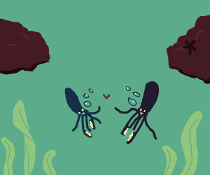 squids make friends with each other