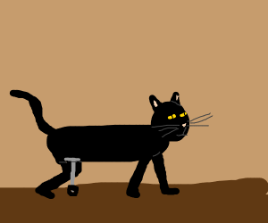 Cat with prosthetic, wheel leg