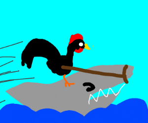 Rooster riding a shark