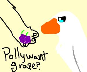 feeding a goose a berrry