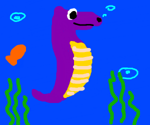 purple sea horse in the ocean