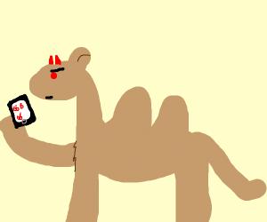 Demon Camel Checks Phone