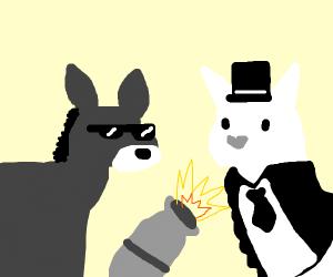 Donkey shows dapper llama his cannon