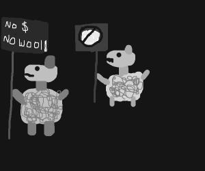 Sheep on strike