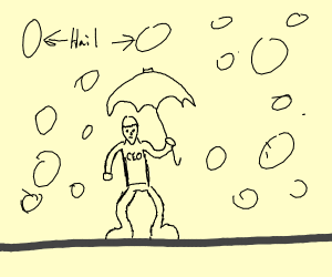 CEO in a Hailstorm