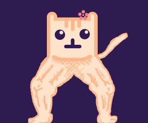 Buff legged Nyan Cat