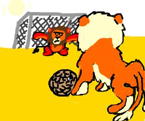 Lions play football