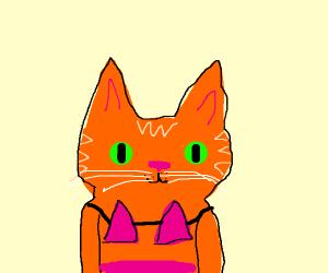 Ginger Cat in Pink Bikini