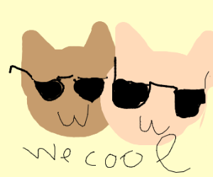 Two Cool Cats