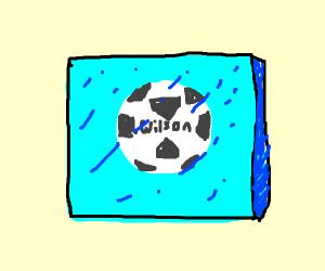 Frozen Soccer Ball