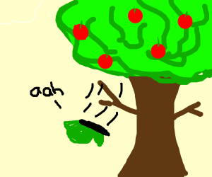 Green Butterfly fell from tree