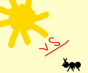 sun vs ant!!