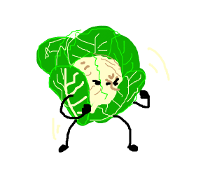 cabbage fighting profile