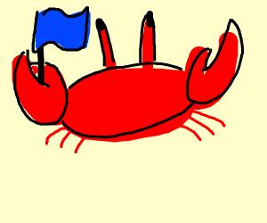 blue flagged crab