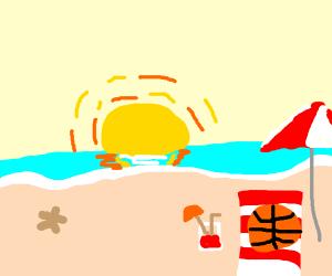 a basketball sunbathing at the sea