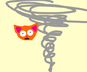 Cat stuck in tornado