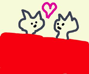 2 cats makin' babies