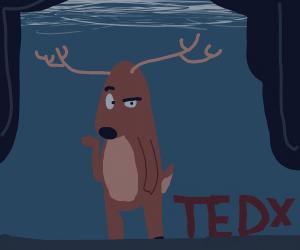 Reindeer Ted Talk