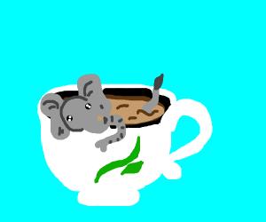 Mini elephant in a teacup