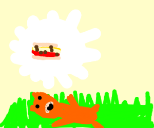 Garfield smiling in grass on sunny day