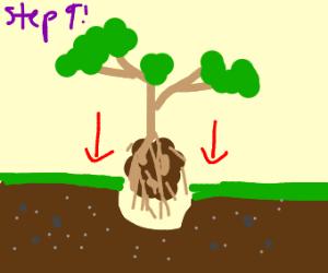 Step 8: Dig Up Jesus' Grave