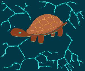 Turtle of lightning