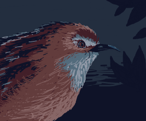 close up of bird in the night